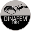 Dinafem seeds bank