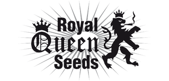 Royal Queem seeds bank