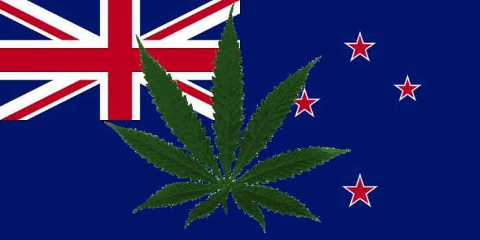 New_Zealand_cannabis